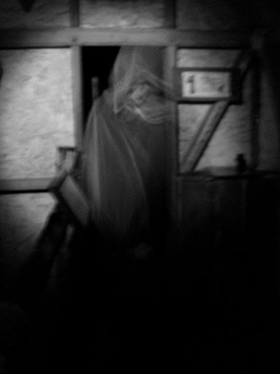 Ghostly apparition captured 18th July 2010